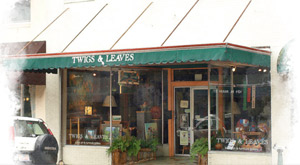 Twigs & Leaves Gallery